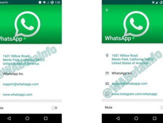 verified Whatsapp business account
