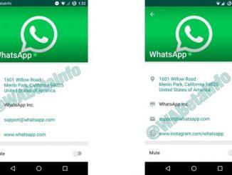 verified Whatsapp business account